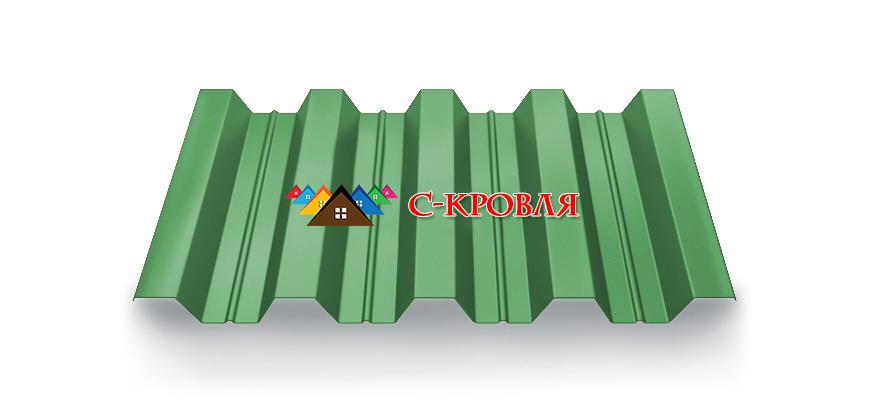 профнастил пк 57 цвет 6005