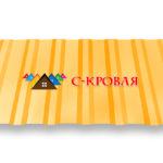 профнастил ПК 20 цвет 1003