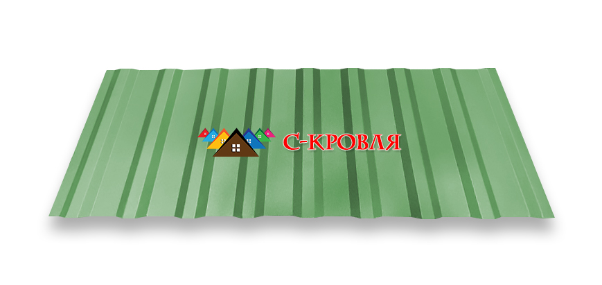 профнастил ПК 20 цвет 6005