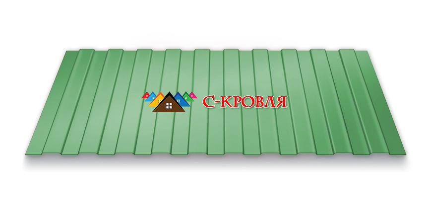 профнастил ПС 8 цвет 6005