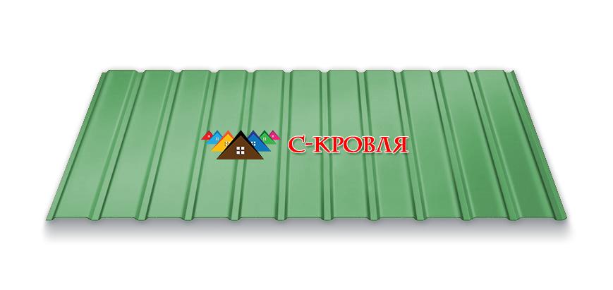 профнастил ПС 10 цвет 6005