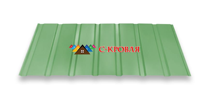 профнастил ПС 15 цвет 6005
